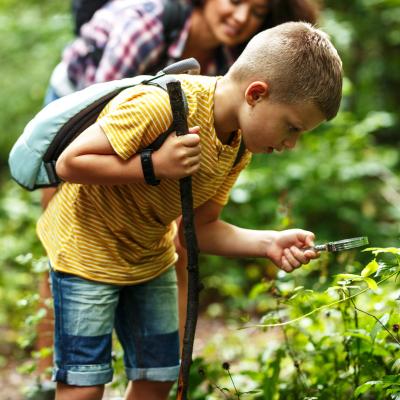 Ce dossier sur les écosystèmes vous aidera à mieux comprendre pour mieux expliquer à votre enfant ce qu'est un écosystème en écologie. Ecologie  et écosystèmes : Sommaire du dossier sur les écosystèmes. Les articles portent sur les écosystè
