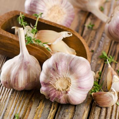 Ail: Mot du glossaire Tête à modeler. L'ail est une plante aromatique à bulbe. Le bulbe de l'ail est utilisé en cuisine comme condiment. Le pluriel d'ail est des aulx. Activités associ&ea