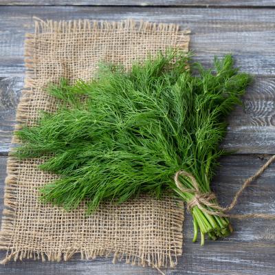 Aneth: Mot du glossaire Tête à modeler. L'aneth est une plante aromatique aussi appelée fenouil. Activités associées.