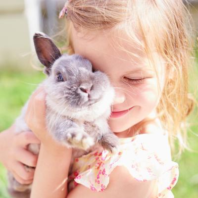 Description de comment apprivoiser un lapin afin qu'il s'habitue à son nouvel environnement et à ses nouveaux propriétaires