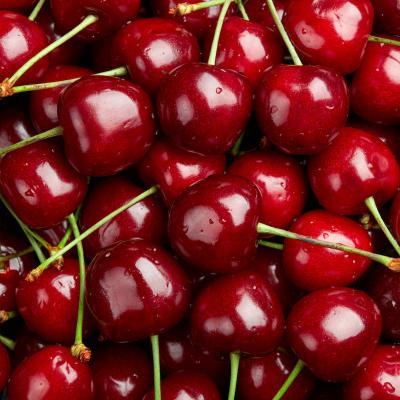 cerise - mot du glossaire Tête à modeler. La ceriseest un fruit à noyau. Définition et activités associées au mot cerise.