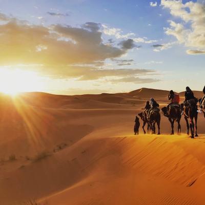 desert - mot du glossaire Tête à modeler. Définition et activités associées au mot desert.