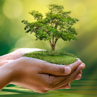 Ecologie et environnement : la sauvegarde la planète - Un dossier pour premettre aux parents de comprendre et d'expliquer l'écologie à leurs enfants. L'écologie au sens le plus large est l'affaire de tous, tous les jours. Chaque jour nos comportements