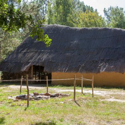 Neolithique - mot du glossaire Tête à modeler. Définition et activités associées au mot Neolithique.