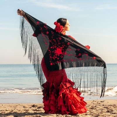 flamenco- mot du glossaire Tête à modeler. Définition et activités associées au mot flamenco.