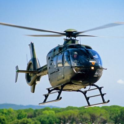 helicoptere - mot du glossaire Tête à modeler. Définition et activités associées au mot helicoptere.