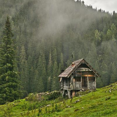 hutte - mot du glossaire Tête à modeler. Définition et activités associées au mot hutte.