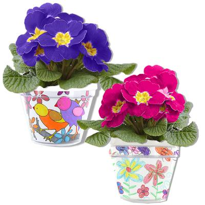 Cadeau à la maîtresse : Pot de fleurs décor
