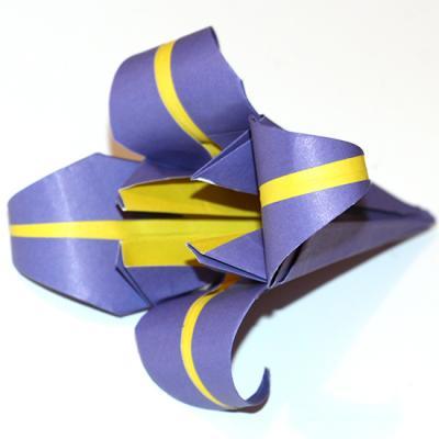 Fleur d'iris, iris en origami