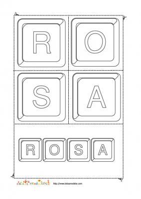 rosa keystone