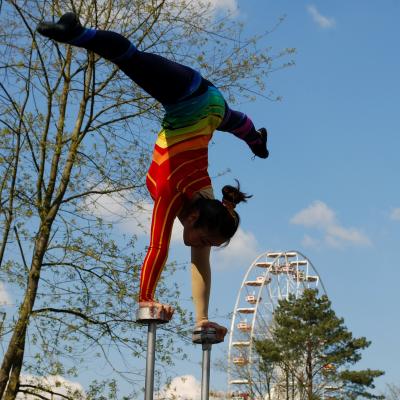 La gymnastique se décompose en 3 disciplines : la gymnastique artistique, la gymnastique rythmique et le trampoline. La particularité de la gymnastique est que les athlètes doivent allier la performance sportive. Retrouvez la liste des épreuves