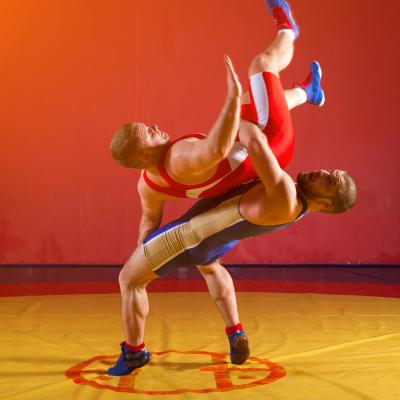 La lutte est un sport qui fait partie des disciplines présentes aux Grands Jeux d'été. Retrouvez des infos sur le sport et la liste des épreuves.