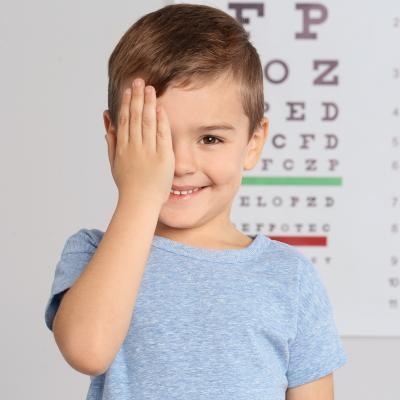 La vision qui nous est si naturelle est en fait un sens extrêmement complexe qui fait intervenir les yeux et le cerveau. De tous les sens, la vue est considérée comme le plus important.