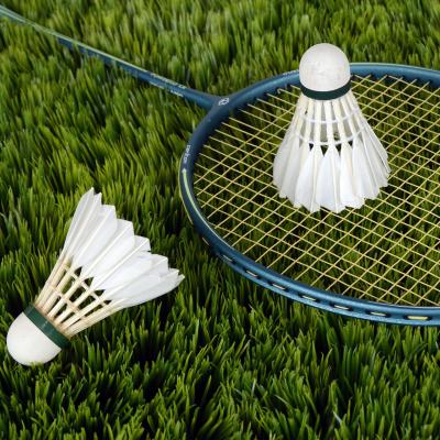 Le badminton n'est un sport olympique que depuis 1992, il a fait sont entrée aux Jeux Olympiques en Espagne, aux Jeux Olympiques de Barcelone. Comme beaucoup de sports modernes, on retrouve des ancêtres du badminton dans de
