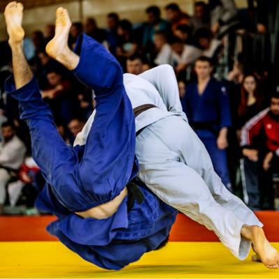 Le Judo est un sport de combat présent dans la liste des disciplines des Grands Jeux d'été depuis 1992. Retrouvez des infos sur ce sport ainsi que la liste des épreuves en compétition.