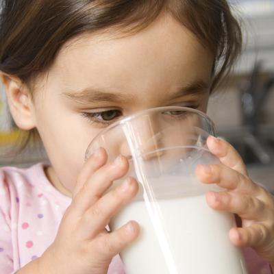 Le lait un aliment complet mais qui succite la polémique. Un dossier pour le lait pour vous aider à faire vos choix. Qu'apporte le lait à votre enfant ? Entre bénéfice et controverse, faut-il donner du lait à votre enfant ? Le lait est-il un bon aliment p