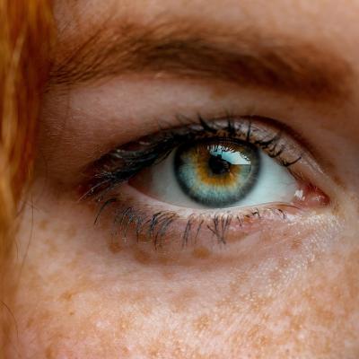 oeil - mot du glossaire Tête à modeler. Définition et activités associées au mot oeil.