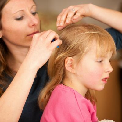 A quoi ressemble un pou ? Comment le reconnaitre ? Ce petit insecte est deteste de tous les parents et a chaque rentree, a chaque fois que l'enfant se gratte les cheveux, tous les parents n'ont qu'une seule peur : que leur enfant ait attrape des poux.
