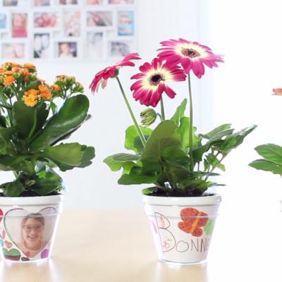 Une activité à faire avec les enfants : le pot de fleurs à décorer