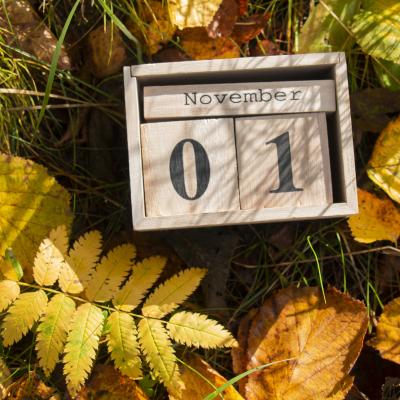 La Toussaint tombe le 1er novembre, c'est la fÍte chrétienne de tous les saints. La Toussaint précède la fÍte des morts qui a lieu le 2 novembre, mais le 2 novembre n'étant pas fér