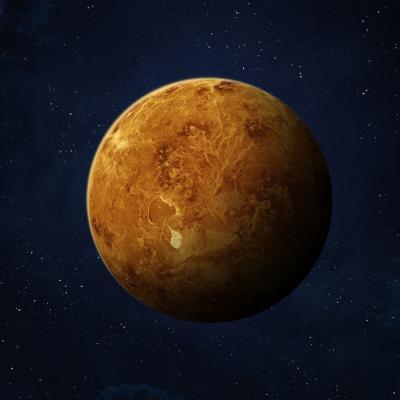 Venus - mot du glossaire Tête à modeler. Définition et activités associées au mot Venus.